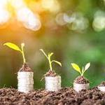 Understanding How To Grow Your Money